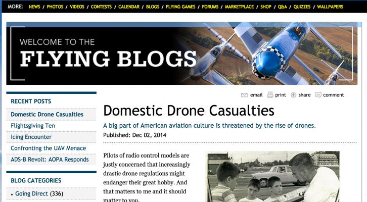 Domestic Drone Casualties